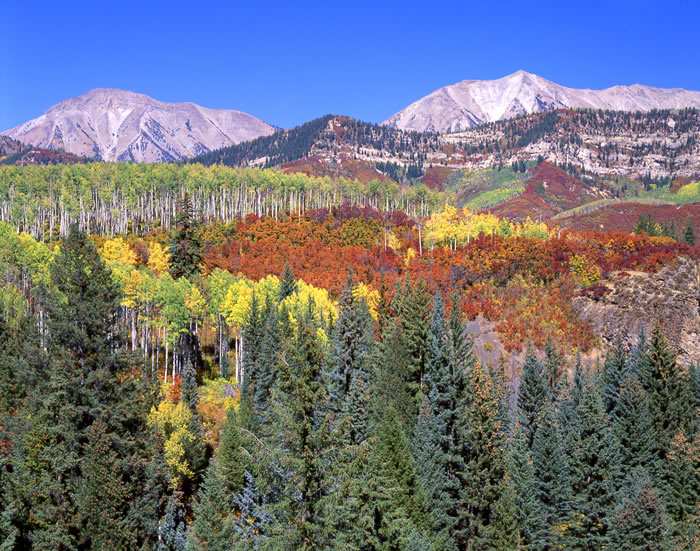 0552 West Elk Autumn #2