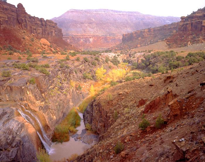 0683 Dominguez Canyon Autumn