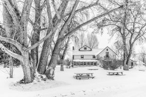 1103 Carpenter Ranch Winter